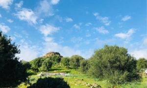 Foto del Nuraghe Sirai a Carbonia.