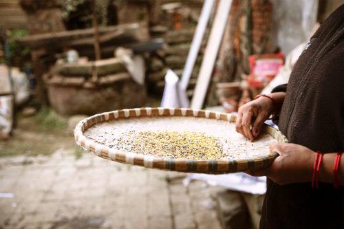 Foto di un cesto con dei semi e una mano che li sfiora. Immagine di molte tradizioni